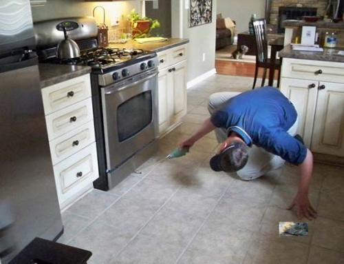 Ratproof your home